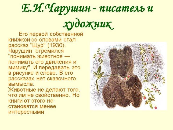 Чарушин е и рассказы о животных для чтения
