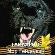6fc74fd9a59bebf9370d8eecdf98d072.jpg