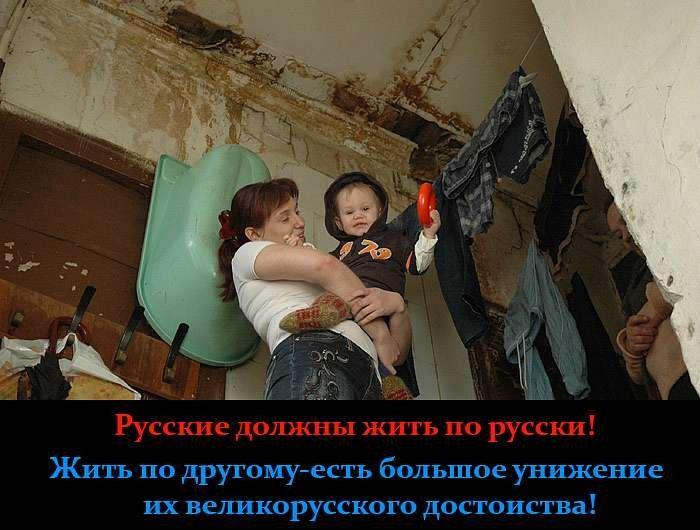 картинка россияне должны жить хорошо изображает