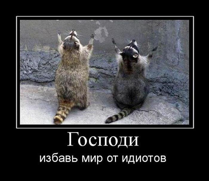 Image Hosted by PiXS.ru