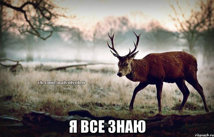 Если ты олень скачать песню