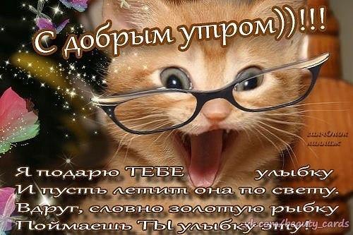 Дневник glebovaaa  LiveInternet  Российский Сервис
