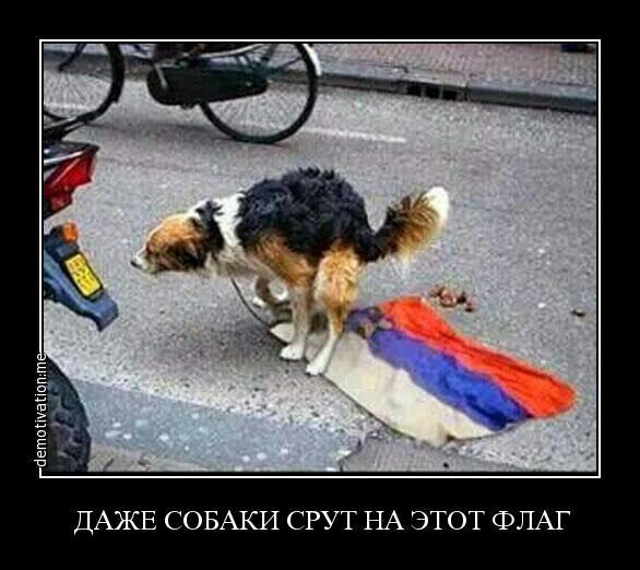 Українські ветерани порвали прапор РФ біля Єлисейського палацу - Цензор.НЕТ 8947