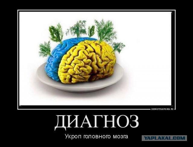Приколы про мозг приколы картинки