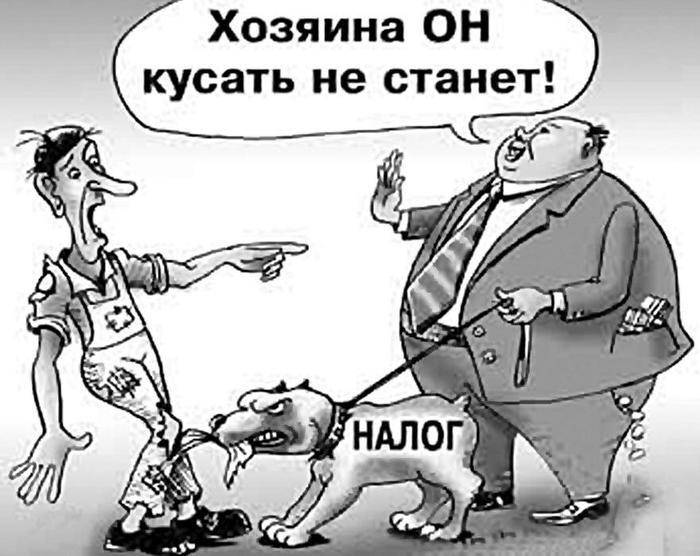 Источник: Яндекс картинки.