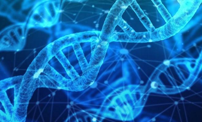 В генах африканцев нашли след неизвестного науке типа людей
