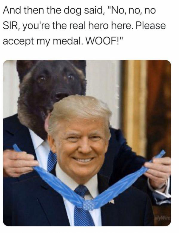 Трампа высмеяли в соцсетях после награждения собаки за фейковое «уничтожение» аль-Багдади
