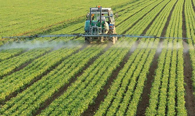 В МЭРТ назвали цену гектара замели после открытия рынка