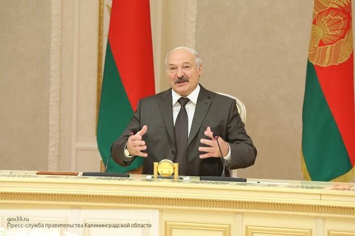 Боится, что ему заблокируют въезд в страну: Кот о том, почему Зеленский не поедет в Минск