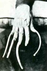Ногти благородного человека