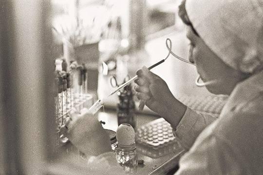 39 лет назад в СССР на военном заводе потеряли сибирскую язву.  фото: РИА Новости
