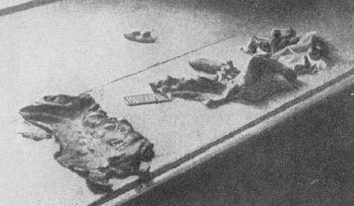 Найденная в подвале харьковской ЧК кожа, содранная с рук жертв при помощи металличего гребня и специальных щипцов.