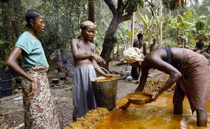 На фото: женщины во время приготовления пальмового масла, Сьерра-Леоне, Западная Африка