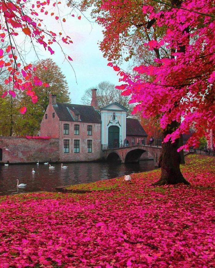 красивые места мира фото с описанием хотелось бы, чтобы