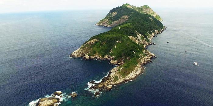 Zmeinyiy-ostrov-5