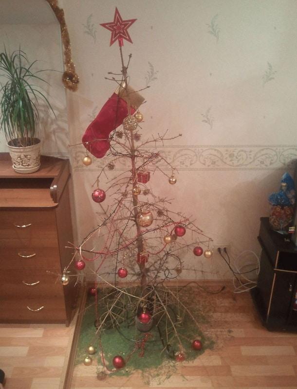 Осыпается елка что делать