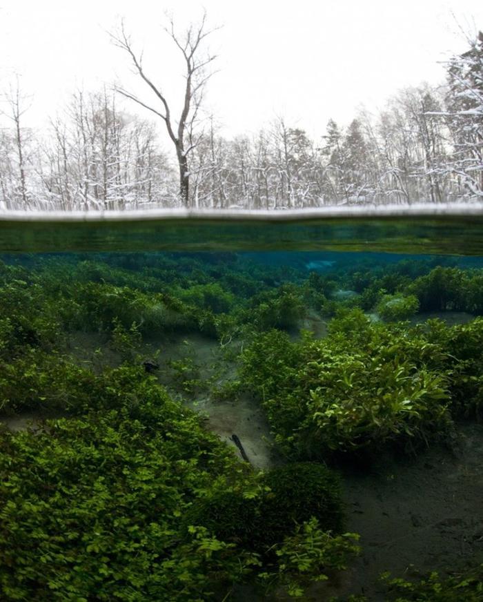 Да, это одна фотография. Марий Эл, Россия без фотошопа, природа, удивительные фото, человек