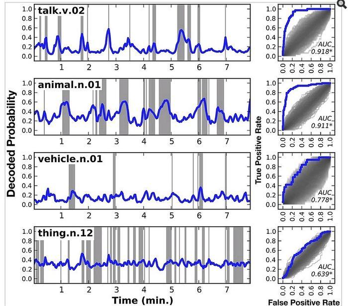 Такие графики мозговых волны свидетельствуют о том, что спящий человек: 1. слышит разговор 2. видит животное 3. видит транспортное средство 4. видит некую вещь