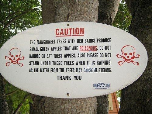 Предупреждающая надпись на манцинелле. Фото: из открытых Интернет-источников