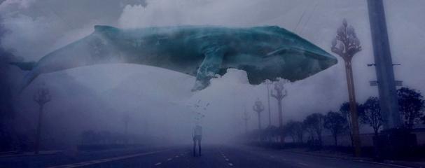 Синий кит, что это за игра
