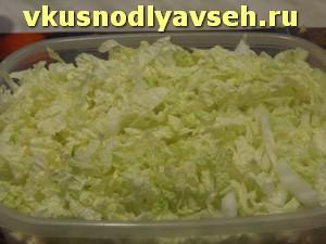 слой тонко нарезанной пекинской капусты