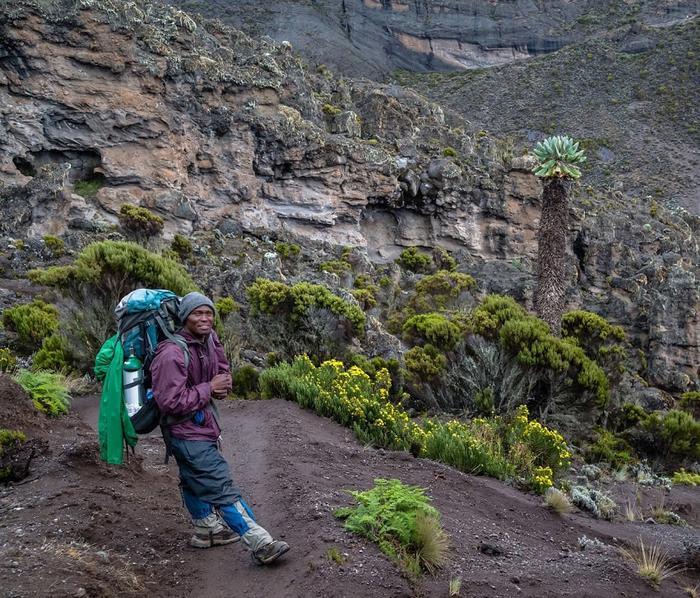 Вулкан Килиманджаро в Танзании (Африка)