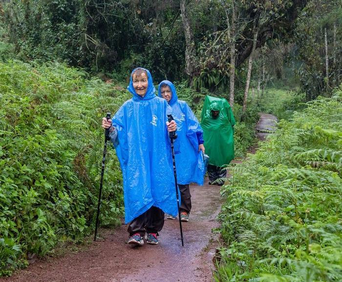 Подъем на вулкан Килиманджаро