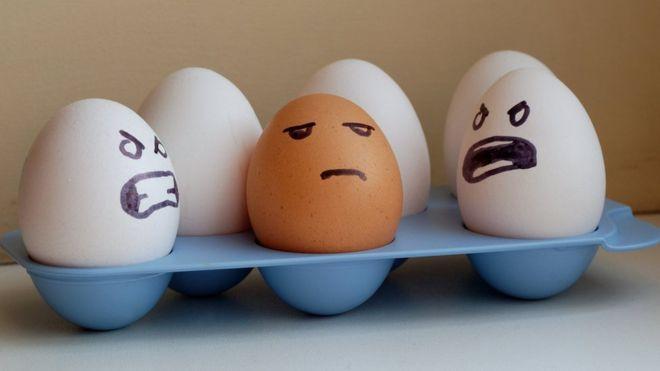 Яйца разного цвета