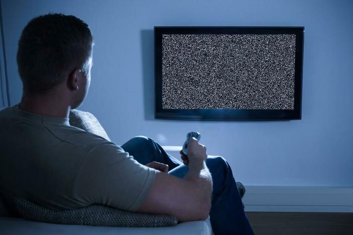 Сегодня такая картинка - лучшая передача по телевизору. Фото Яндекс.Картинки.