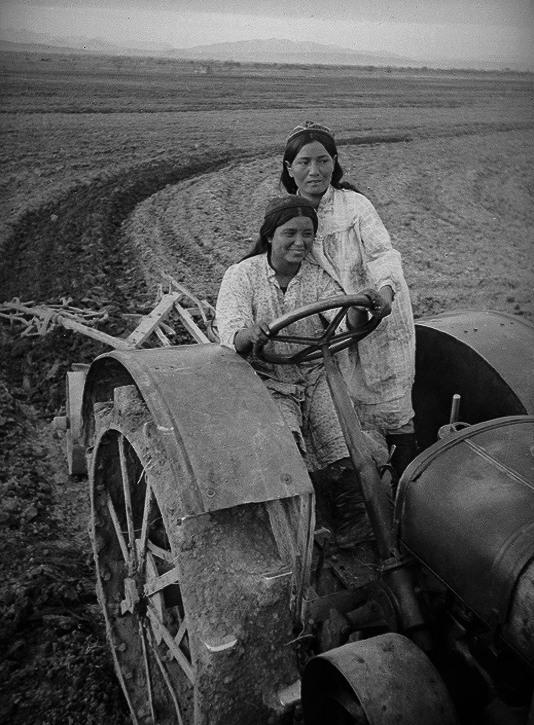 колхоз узбечки трактористы