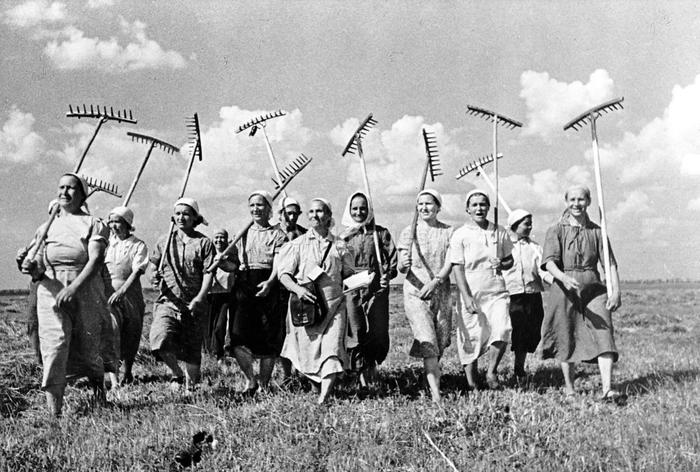 Klishevo collective farm, near Moscow, USSR (Union of Soviet Socialist Republics). A group of women collective farmers replace the men who have left for the front. Image date: ca. 1941.
