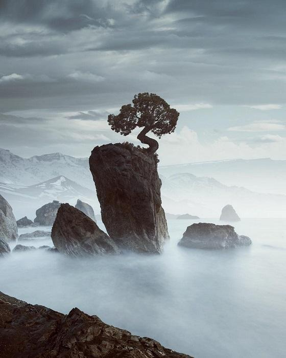 Густой морской туман окутывает побережье.