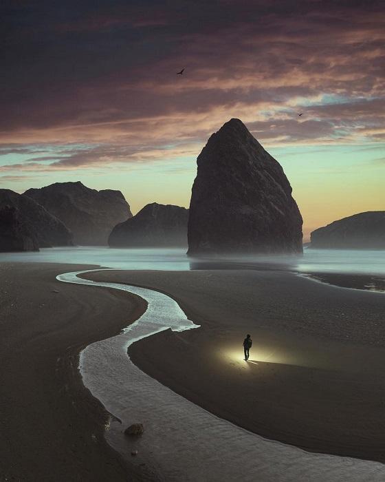 Необычная дорога вьется по мокрому песку.