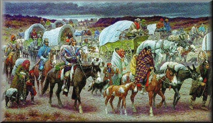 an overview of americas policy against native americans Federal power over native american rights  although native americans have been held to abrogate or protect native american against the secretary of the.