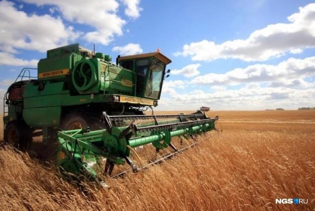 Фермеры обнаружили, что земельный налог взлетел в 5 раз. Это грозит ростом цен на продукты
