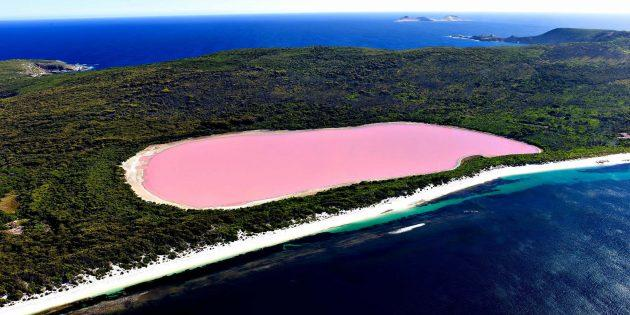 Озеро Хиллер в Австралии