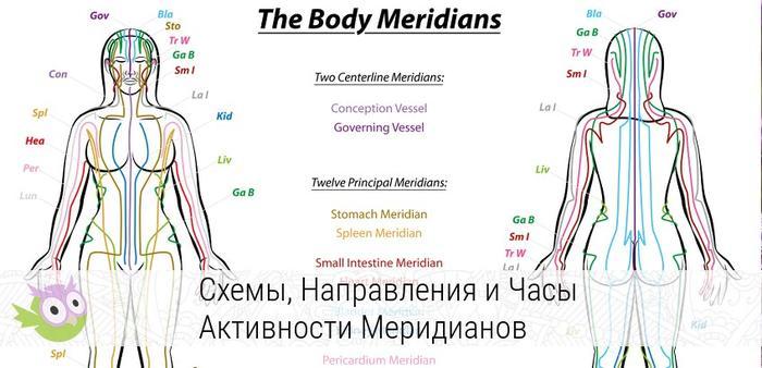 Энергетические меридианы тела. Что это такое, как они влияют на здоровье и благополучие