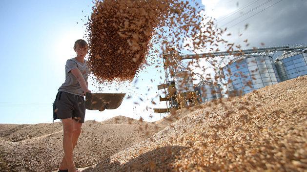 Аграрии на грани дефолта. Засуха превращает Украину в ненадёжного поставщика зерна