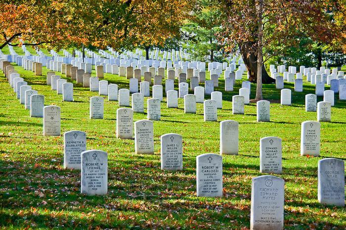 6948172 4813057 - Как живут ветераны в Америке?