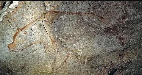 Медведь в пещере Шове (Иллюстрация из открытых источников)