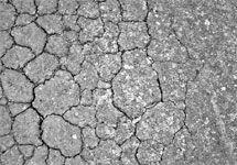 Эксперты: Изменение климата вызовет войны