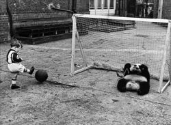 Раритетные фотографии из истории лондонского зоопарка (фото)