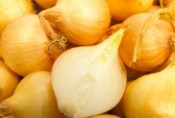 Ученые обнаружили необычные свойства лука