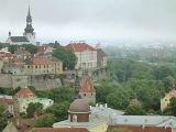 Эстония введет онлайн-визы для россиян