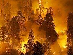 Пожарная катастрофа в Сибири