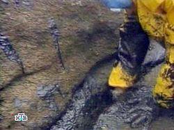 В Хабаровском крае произошла утечка 50 тонн нефти