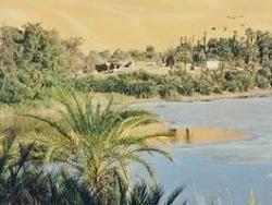 Жители Египта мечтают озеленить пустыню