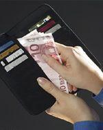 Деньги из бюджета ЕС все чаще уходят в неизвестном направлении