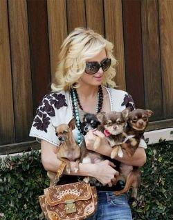 Пэрис Хилтон и ее собаки будут жить вечно