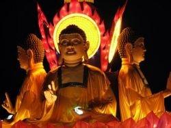 Фестиваль китайских фонариков (фото)